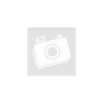 XL101CLED Exit